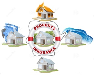 home-insurance-property-insurance-lifebuoy-fire-flood-tornado-vector-illustration-concept-58670967